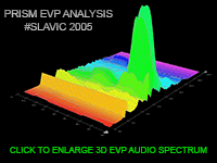 PRISM EVP 3D WAVEFORM ANALYSIS